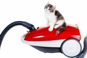 Best Vacuum Cleaner for Pet Hair : Which One Should You Choose ?
